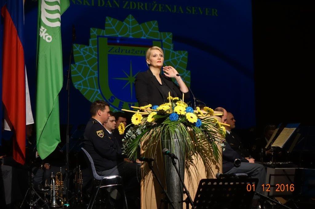 V Krškem slovesno obeležili 27. obletnico akcije Sever